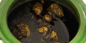طرز تهیه قورمه سبزی با مرغ