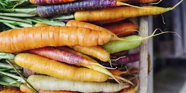 خواص و مضرات هویج , عوارض و زیان های هویج , خاصیت ها و فواید هویج , o hw i d