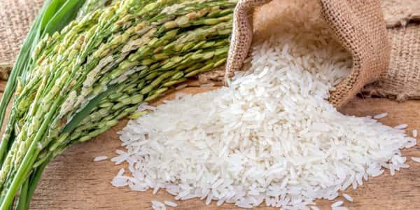 خواص و مضرات برنج , عوارض و زیان های برنج , خاصیت ها و فواید برنج , o hw fvk