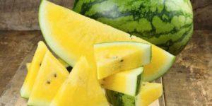 خواص و مضرات هندوانه زرد